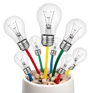 Ideenpflanze